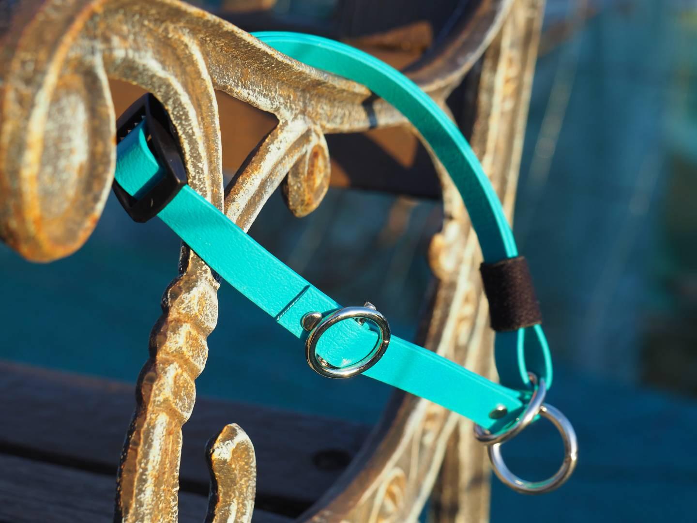 Halsband biothane türkis